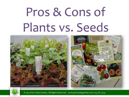 plants vs seeds
